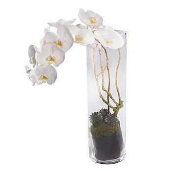 White Orchid Vase Arrangement Funeral Flowers Staines